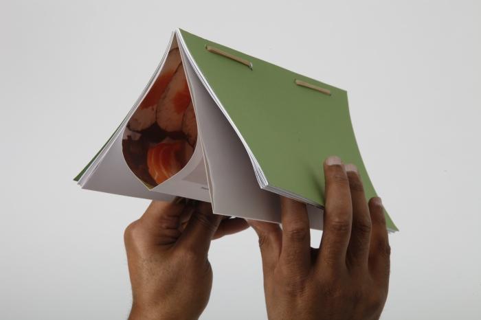 Shaylin Wilkins SIP french fold