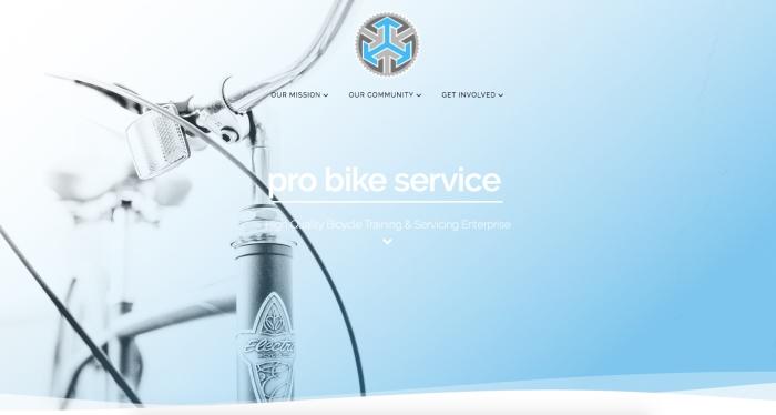 Pro Bike website